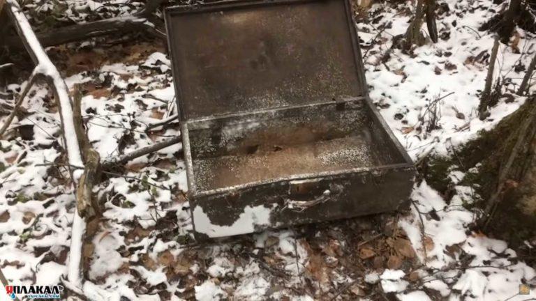 Серый копатель нашел чемодан
