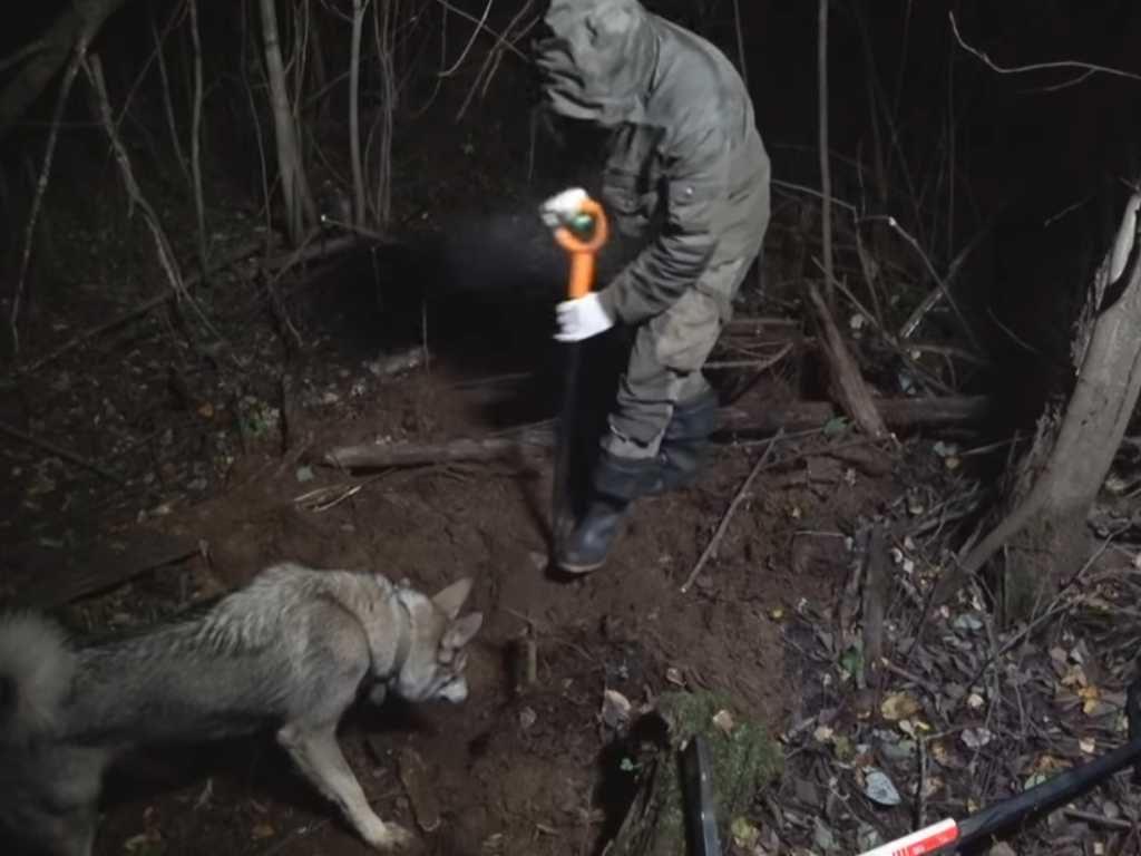 Видео металлокоп ночью