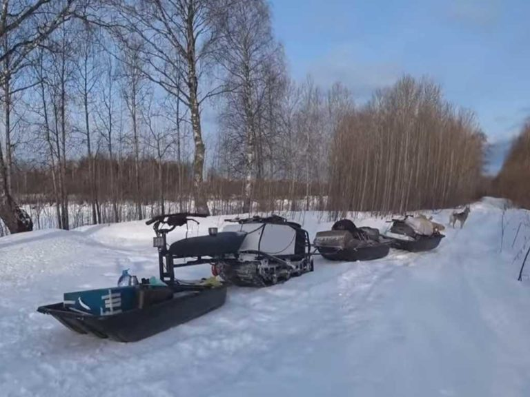 Всё из за Метало Копа зимняя рыбалка